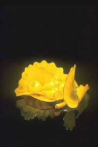 barium yellow persian set with gloss black lip wraps by dale chihuly