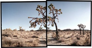 hidden valley, joshua tree national park by michael rauner