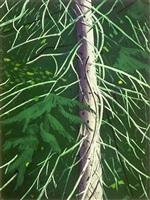 spruce by alex katz