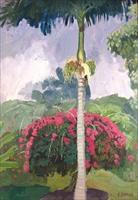 kaianlio, hawaii (flowering shrub) by eugene francis savage