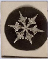 snowflake by wilson a. bentley