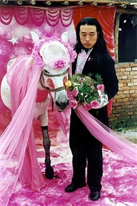 to marry a mule by wang jin