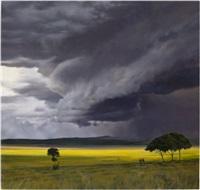 storm field by april gornik