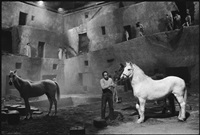 readying the horses for the next take, fellini's satyricon, rome, italy by mary ellen mark