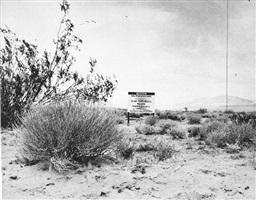 desert gravure by ed ruscha