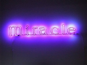 miracle by sylvie fleury