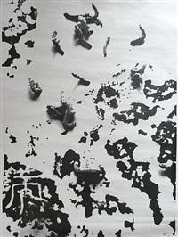 natural series no. 8 by liang shaoji