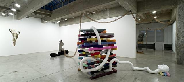 installation view by siobhan hapaska