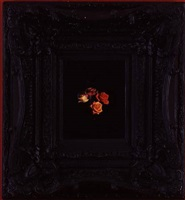 burning flowers ii by mat collishaw