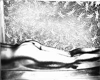untitled nude (odonata) by mariah robertson