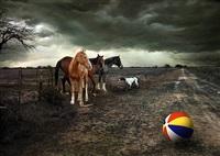 la pelota by sergio fasola