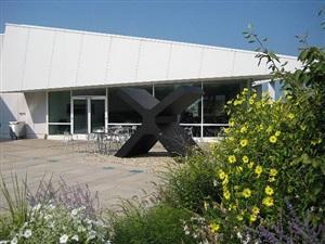 the x, garden by ronald bladen