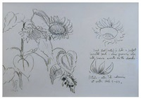 studies for sunflowers by charles ephraim burchfield