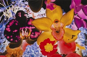 untitled 05, from at the far edges of the universe by marc quinn