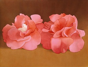 two pink camellias by mark adams