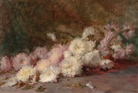 still life of pink and white chrysanthemums by wilton robert lockwood