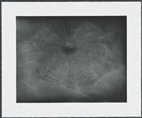 untitled (web 3) by vija celmins