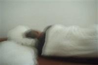 schlaf by peter piller