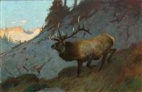 olympic elk by carl clemens moritz rungius