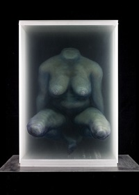 the body by xia xiaowan
