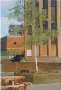 in the city by paul winstanley