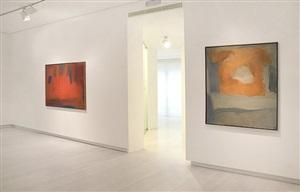 installation view by esteban vicente