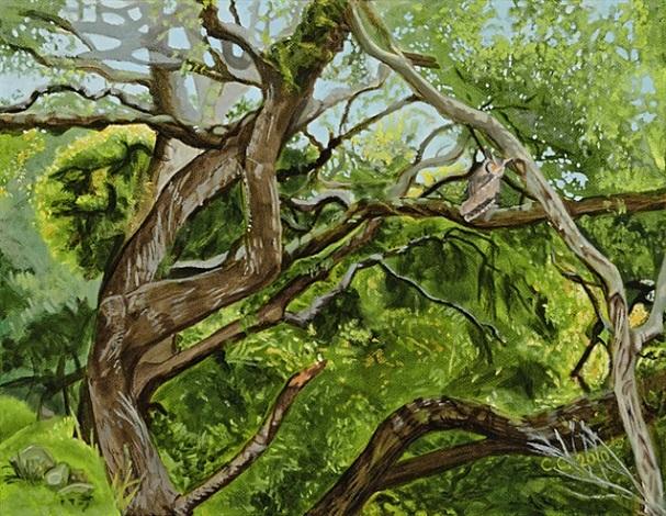 black oaks ii by cayetana conrad
