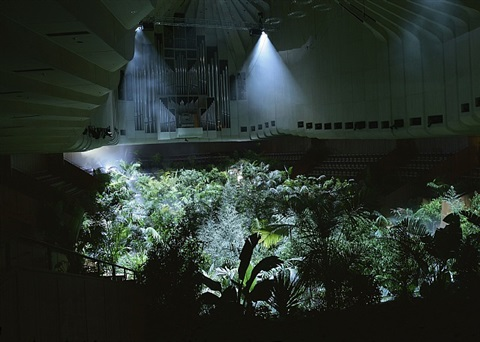 a forest of lines by pierre huyghe