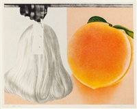 when a leak by james rosenquist