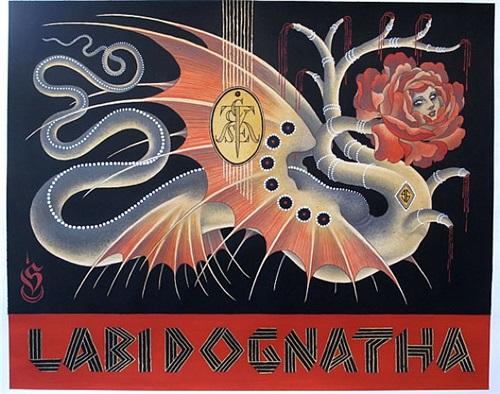 labi dognatha by chris conn askew