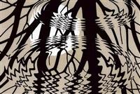 rippled surface by m. c. escher