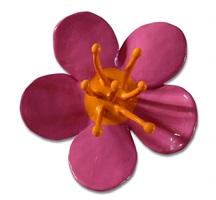 blüte klein (rosa) by thomas stimm