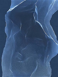torso 9 by james welling