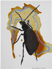 insect 5 by bill woodrow