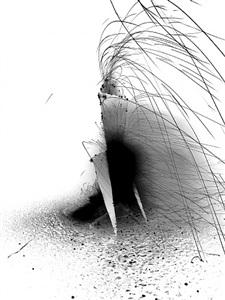 pyro-biro ii (negative) by ralph macartney