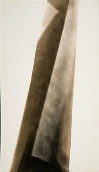 eastman kodak velvet velox, expired may 1928 (b), processed 2010 by alison rossiter