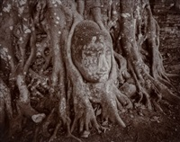 entwined buddha, ayutthaya, thailand, by linda connor