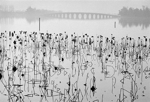 former summer palace, dead lotus flowers on the kunming lake, beijing, china, 1964 by rené burri