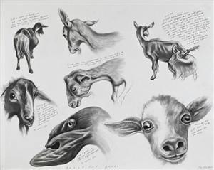 beautiful goats by sue coe