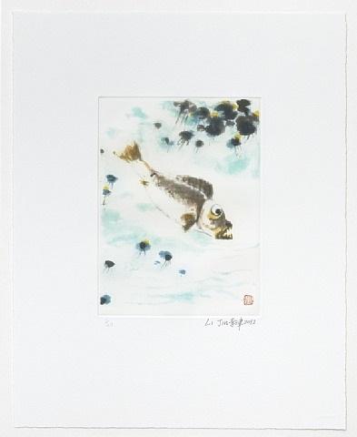 no fish in a clear pond by li jin