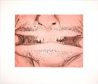 soft ground etching - rose by bruce nauman