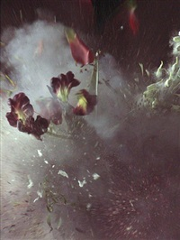 time after time: untitled 27 by ori gersht
