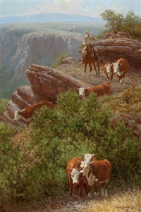 mountain mavericks by wayne baize