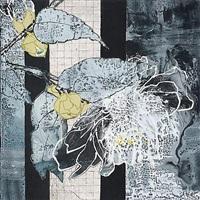 camellia starlight by robert kushner