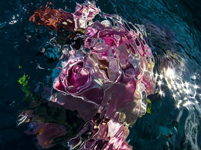 untitled, number thirty by gilles bensimon
