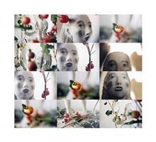 eve in the pomegranates by kiki smith