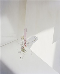 untitled #25 (ill form and void full) by laura letinsky