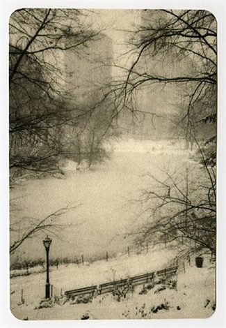 frozen pond, central park by jefferson hayman