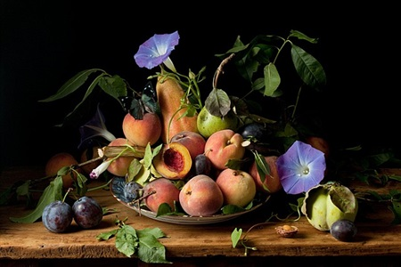figs and morning glories, after g.g. by paulette tavormina