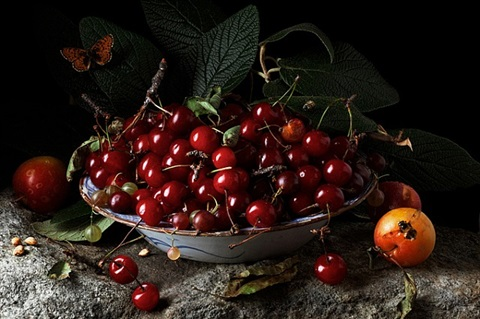 red cherries and plums, after .gg. by paulette tavormina